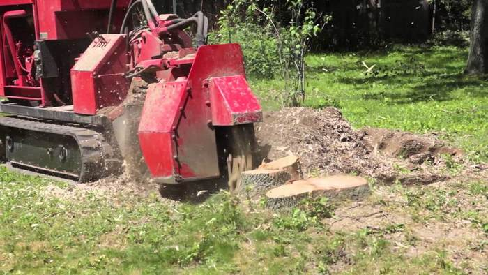 A picture of a heavy duty stump grinder in Ann Arbor, Miami